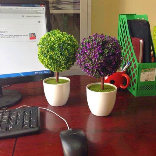 Trên bàn làm việc nên đặt chậu cây tạo không khí và màu sắc tươi mới