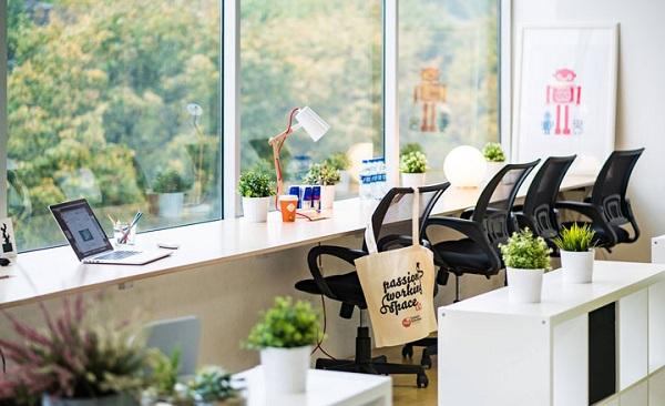 Màu sắc xanh lục của lá cây để bàn làm việc có tác dụng thư giãn tinh thần